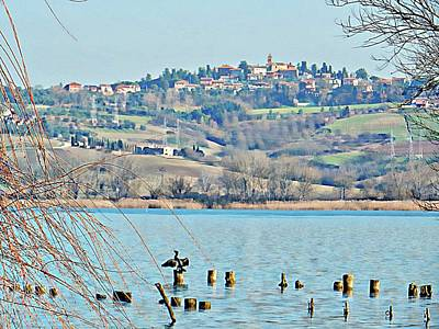Photograph - Cormorant View Of Villastrada by Dorothy Berry-Lound