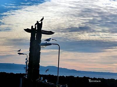 Photograph - Cormorants And Gulls In Harmony by Sadie Reneau