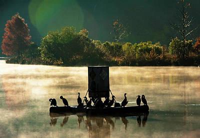 Photograph - Cormorants On Misty Lake by Jim Moore