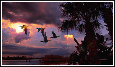 Photograph - Cormorants, Tropical Sunset by A Gurmankin