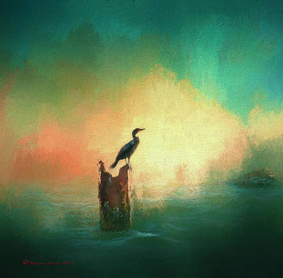 Cormorat Sunset Art Print