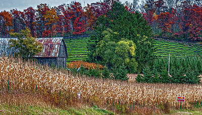 Corn And Ginseng On Poverty Hill Art Print