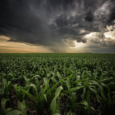 Photograph - Corn And Lightning by Aaron J Groen