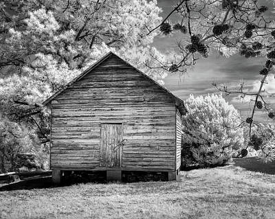 Photograph - Corn Barn And Pine Cones by Paul Seymour