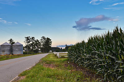 Photograph - Corn Country by Linda Brown