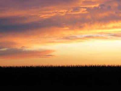 Photograph - Corn Fed Sunset by Kyle West