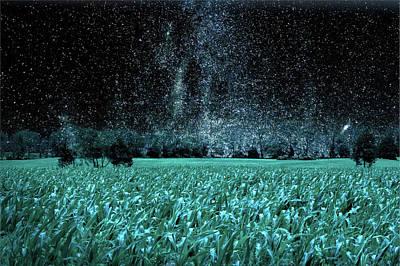 Cornfield Digital Art - Corn Field At Night by William Bader