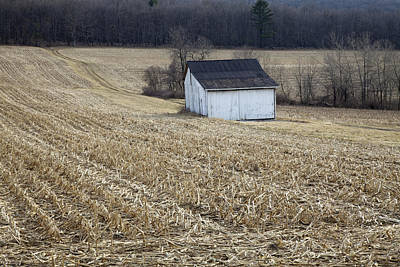 Photograph - Corn Field Barn by John Stephens