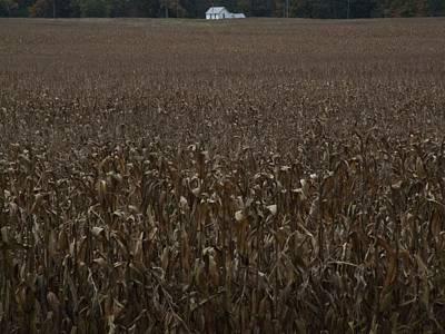 Indiana Landscapes Photograph - Corn Field Farm House by Michael L Kimble