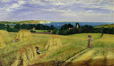 Summer Isles Painting - Corn Field In The Isle Of Wight by Richard Burchett