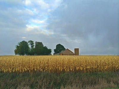 Photograph - Corn Field With Dark Sky by Kathy M Krause
