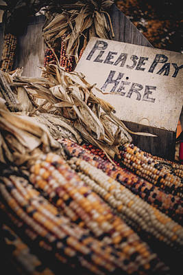 Photograph - Corn For Sale by Jeanette Fellows