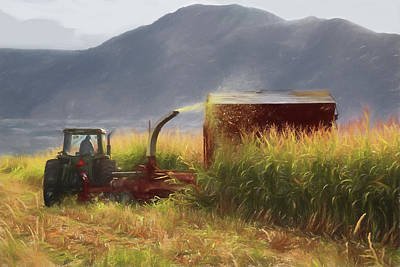 Photograph - Corn Harvest by Donna Kennedy