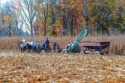 Photograph - Corn Picker by David Arment