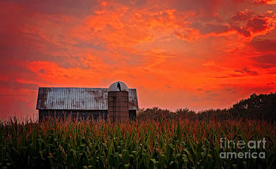 Photograph - Corn by Randall  Cogle
