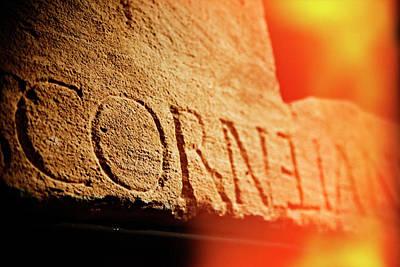 Photograph - Cornelian by Michael Hope
