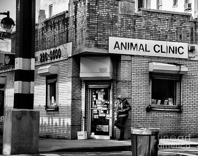 Photograph - Corner In Brooklyn Animal Clinic  by Chuck Kuhn