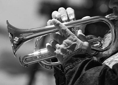 Photograph - Cornet On Pearl In Bw by James BO  Insogna