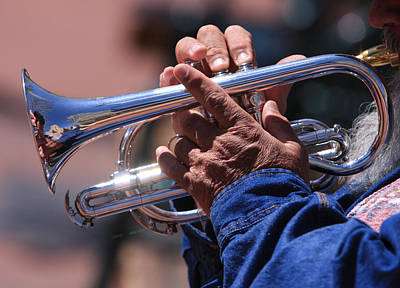 Photograph - Cornet On Pearl by James BO  Insogna