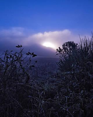 Photograph - Cornfield Dawn by Alan Raasch