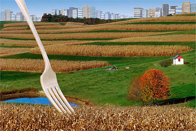 Photograph - Cornfields With City by Dolores Kaufman