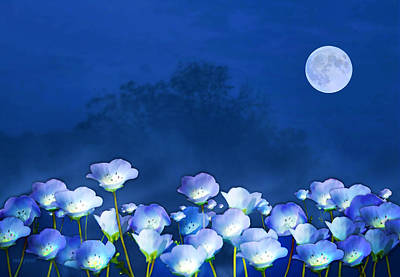 Cornflowers In The Moonlight Art Print by Valerie Anne Kelly