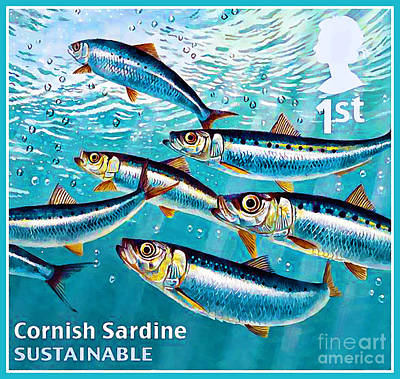 Painting - Cornish Sardine by Lanjee Chee
