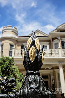 Cornstalk Fence - Royal Street Art Print