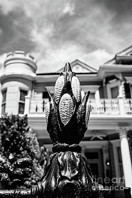 Photograph - Cornstalk Fence Bw by Scott Pellegrin
