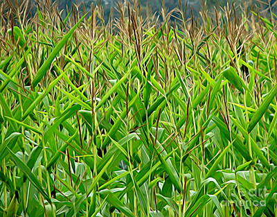Photograph - Cornstalks In Wny Melting Colors Effect by Rose Santuci-Sofranko
