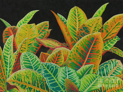 Wall Art - Painting - Cornucopia Of Crotons by Tracy Farrand