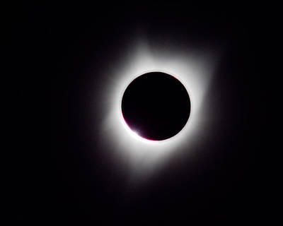 Total Eclipse Of The Sun Photograph - Corona -- 2017 Solar Eclipse In Independence, Oregon by Darin Volpe