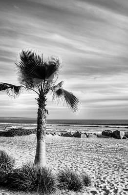 Photograph - Coronado Beach Dreams Bw by Mel Steinhauer