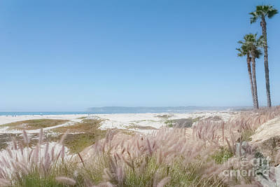Photograph - Coronado Beach by Pamela Williams