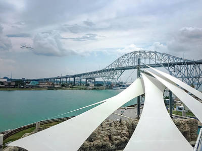 Photograph - Corpus Christi Harbor Bridge by Debra Martz
