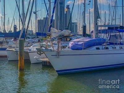 Photograph - Corpus Christi Marina by Tony Baca