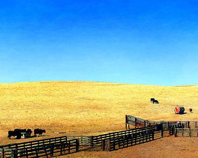 Photograph - Corral And Chute by Timothy Bulone
