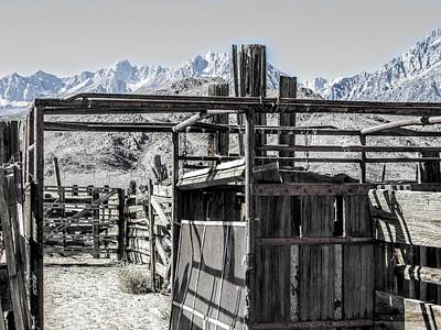 Photograph - Corral Closeup by Marilyn Diaz