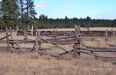 Photograph - Corral by Debby Pueschel