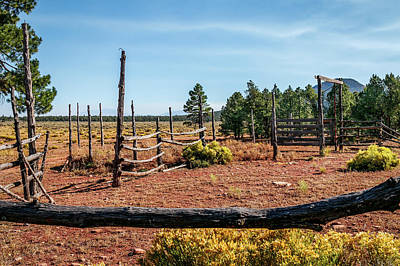 Photograph - Corral by Doug Long