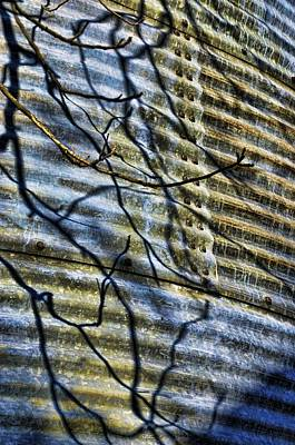 Photograph - Corregated Shadows II by Jan Amiss Photography