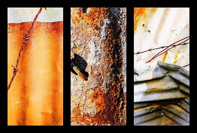Photograph - Corrugated Iron Triptych #10 by Lexa Harpell