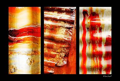 Photograph - Corrugated Iron Triptych #4 by Lexa Harpell