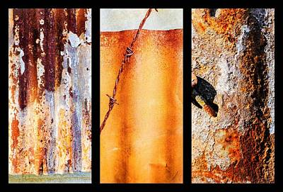 Photograph - Corrugated Iron Triptych #8 by Lexa Harpell