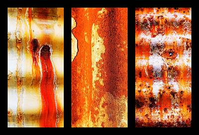 Photograph - Corrugated Iron Triptych #9 by Lexa Harpell