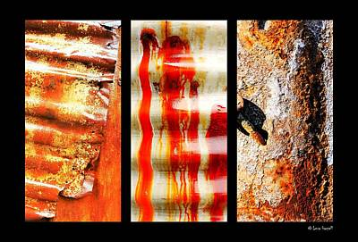 Photograph - Corrugated Iron Triptych #3 by Lexa Harpell
