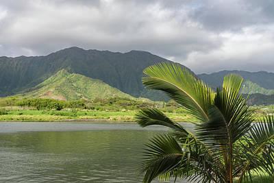Photograph - Corrugated Mountains And Palm Trees - Hawaiian Travel by Georgia Mizuleva