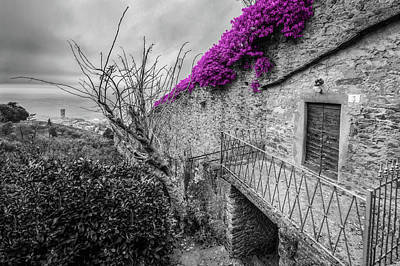 Photograph - Cortona Wall  by Al Hurley