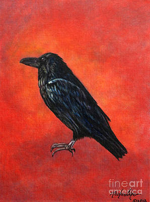 Painting - Corvus Corax by Michaeline McDonald