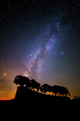 Photograph - Cosmic Caprock Bison by Stephen Stookey